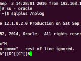 Linux系统下oracle软件的sqlplus删除回退键无效的问题